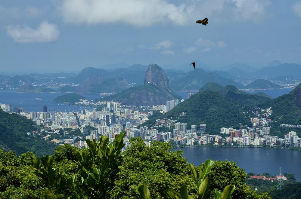 Milosc-do-Rio-de-Janeiro